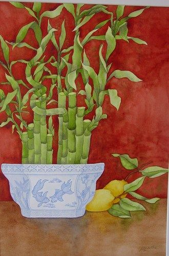Watercolor Painting Of Lucky Bamboo In Chinese Vase The