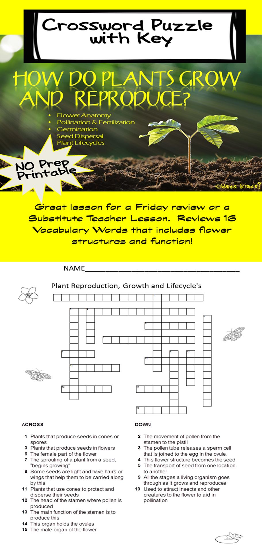 Plant Growth, Reproduction and Life Cycle Crossword Puzzle and Key ...