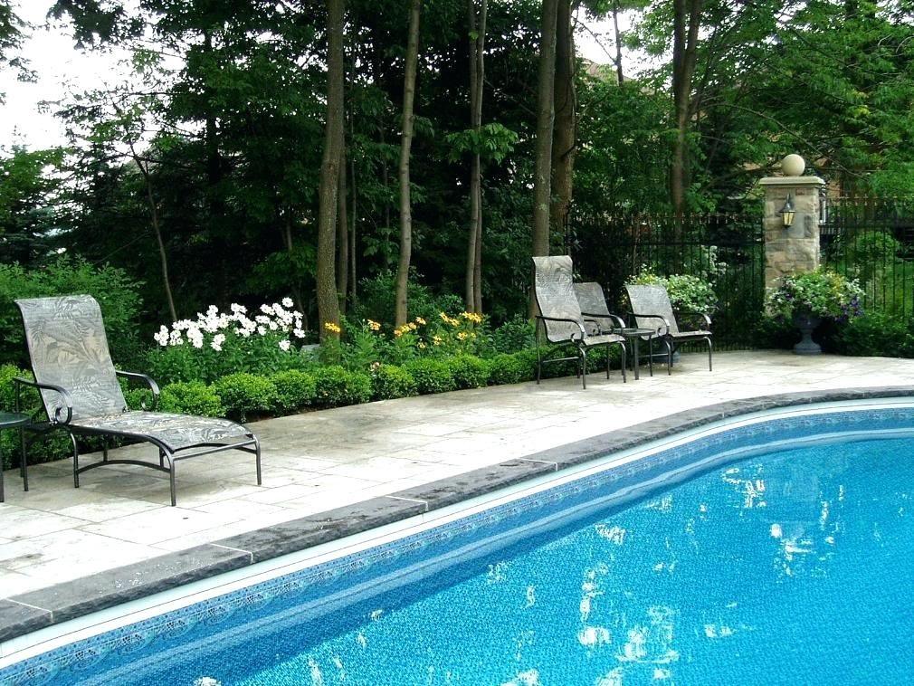 Backyard Pool Bar Ideas