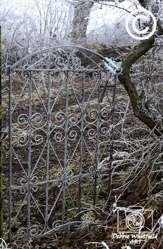 """""""Ghostly Gateway to Graveyard"""" Fine Art Prints Available in a Range of Sizes. Buy Now From http://dwhitfieldart.wordpress.com/landscape-photography/seasonal-abstracts/"""