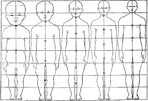 Body proportions of babies to adults. image: proportion of ...