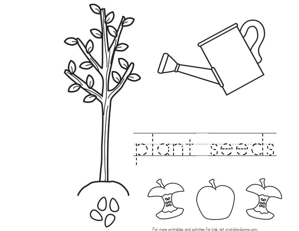 Johnny Appleseed Coloring Page Unique Seed Coloring Page