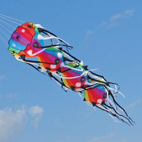 13 Ft Willi Koch Myriapod Inflatable Kite Go Fly A Kite Kite Wind