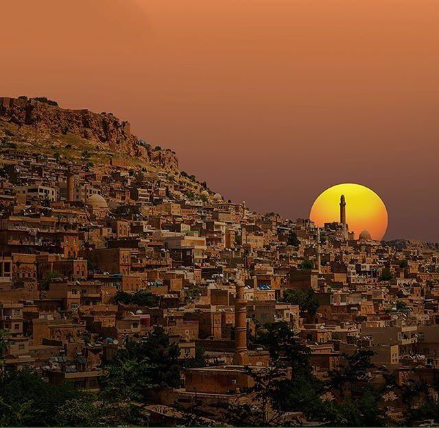 "Turkey_Pics on Twitter: ""#Mardin #Turkey https://t.co/d2gBFioMNd"""