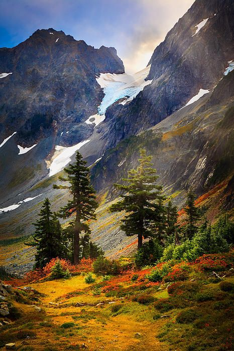 Top Of Cascade Pass Print By Inge Johnsson Beautiful Places Beautiful Landscapes Beautiful Nature