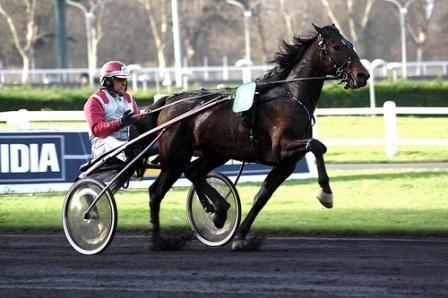 course cheval     Visitez notre espace paris turf pour gagner de l'argent sur internet ...