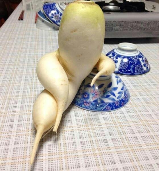 Un fenomeno vegetal