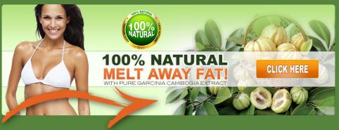 Wellness core reduced fat (rf) a grain-free food photo 7