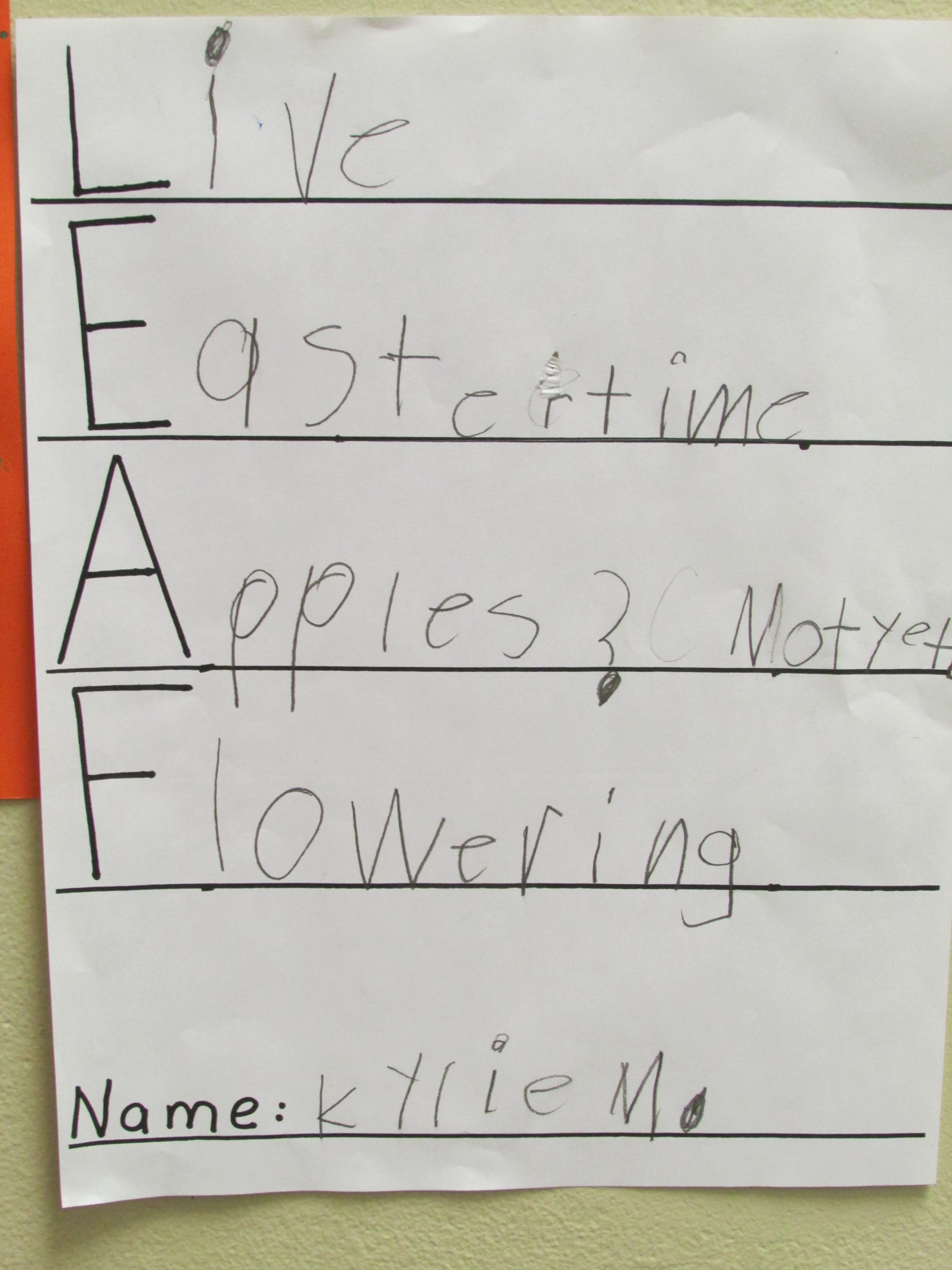 An Acrostic Poem By A Kindergarten Student Montessori