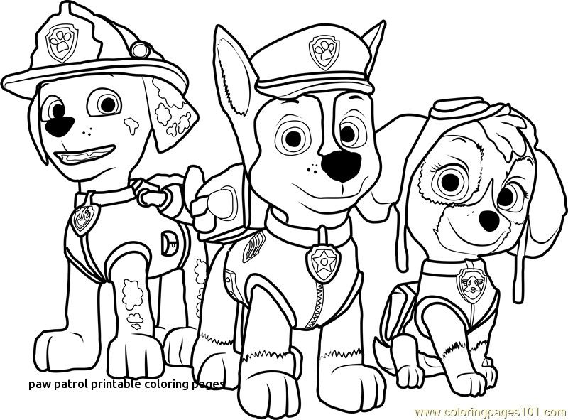 Coloring Pages Coloring Pages Paw Patrol Paw Free From Coloring