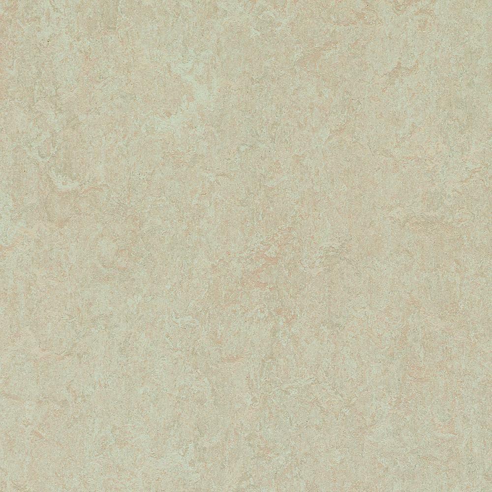 Forbo Silver Birch Marmoleum Click Cinch LOC Square 333871