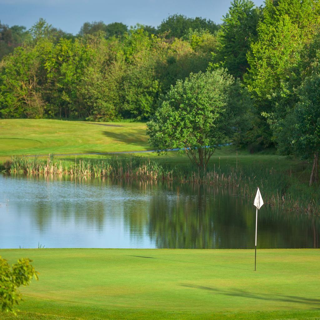 15+ Alexander park golf club viral