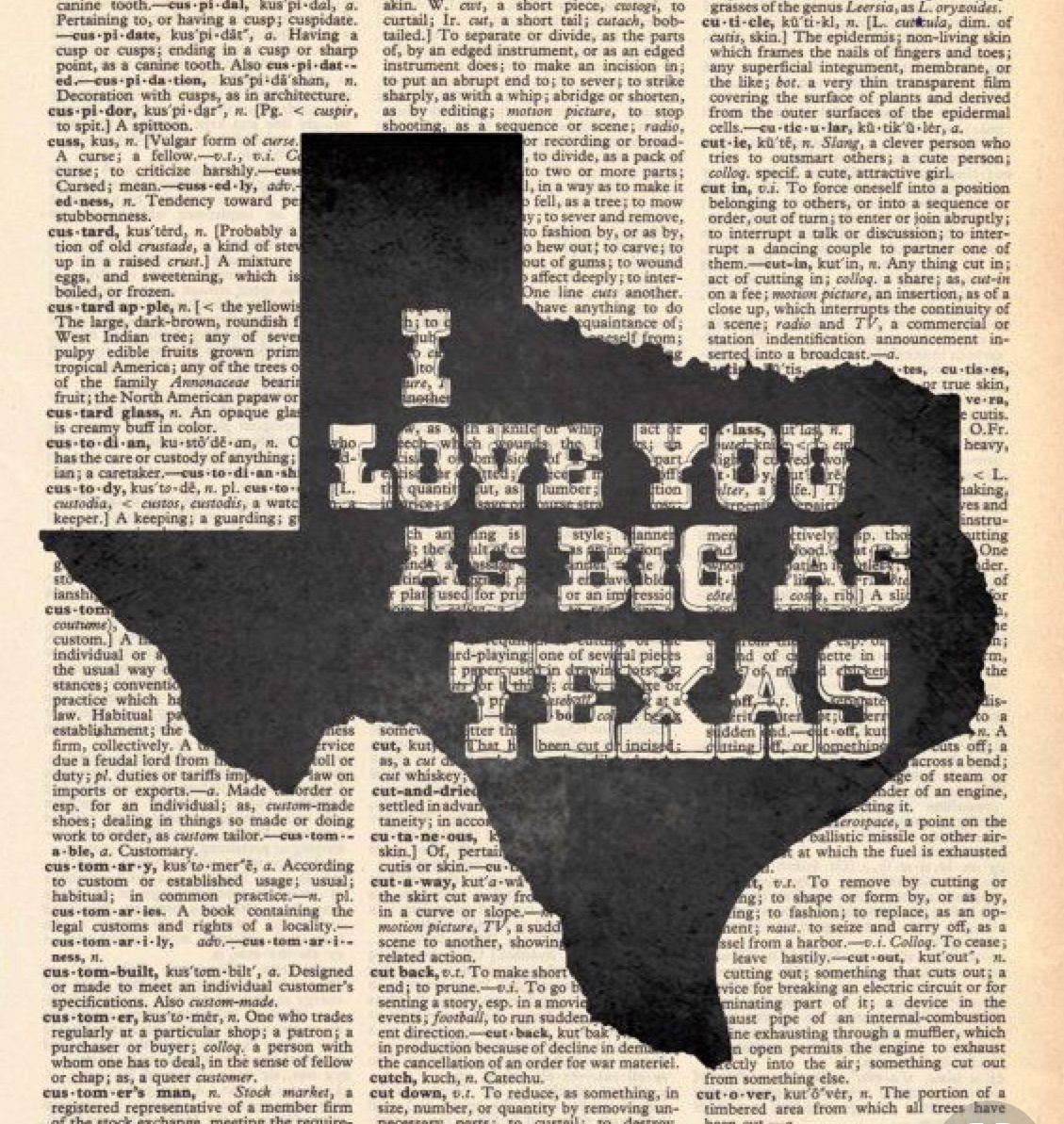Pin Pa Texas
