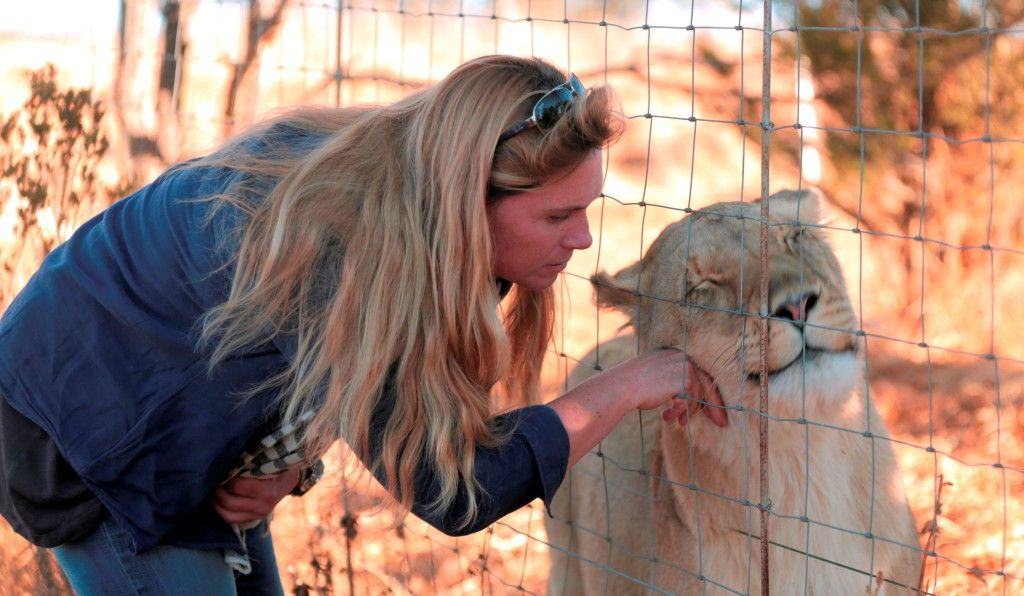 Animal Planet     A brand new series THE LION QUEEN follows Andi Rive and her mission to save the Glengariff Lion Reserve.