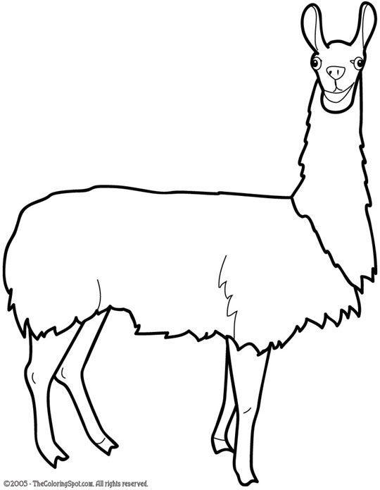 How fun! The coloring spot | Simples | Pinterest | Llamas, Drawing y ...