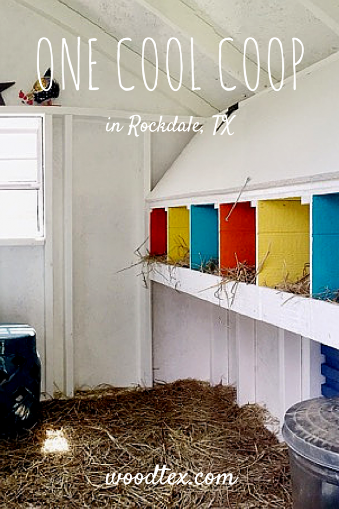 Check out this fun fancy chicken coop interior chicken for Chicken coop interior designs