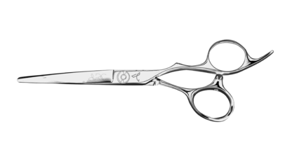 Master Series Paragon Ii In 2020 Japanese Scissors Professional Hairstylist Handcraft