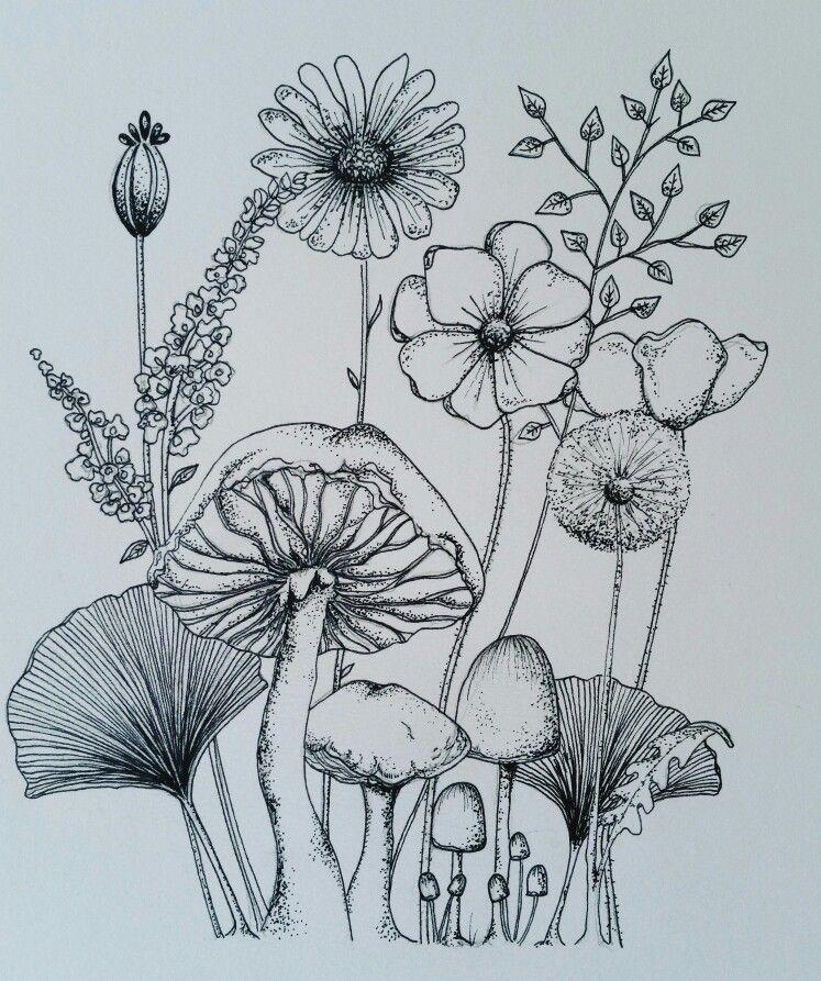Wild Flowers Ink sketch Wildflower drawing, Flower