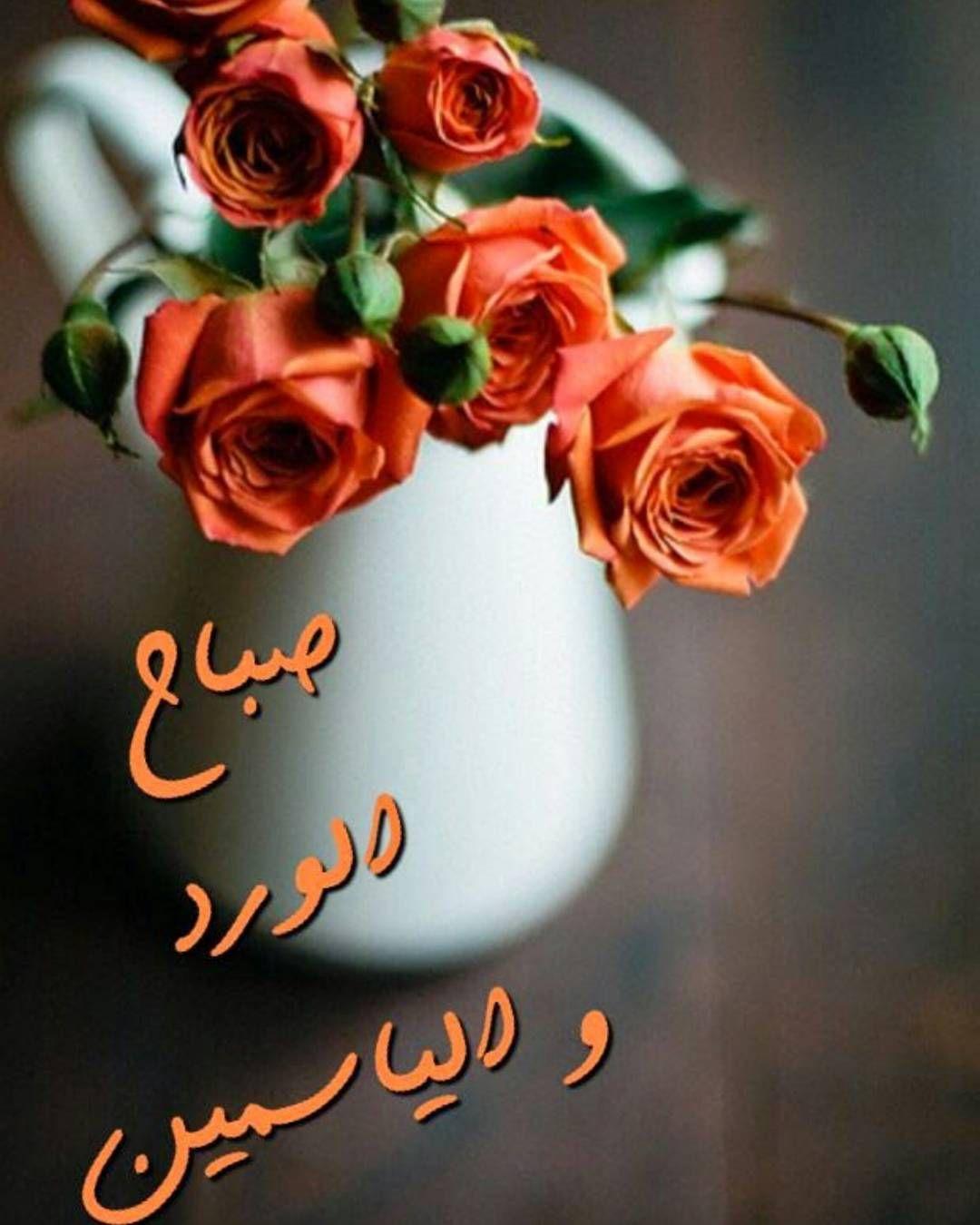 Emraa On Instagram صباحكم ورد وفل وياسمين نتمني لكم جميعا يوم مشرق ومليئ باﻷخبار السارة Good Morning Flowers Good Morning Greetings Good Morning Arabic