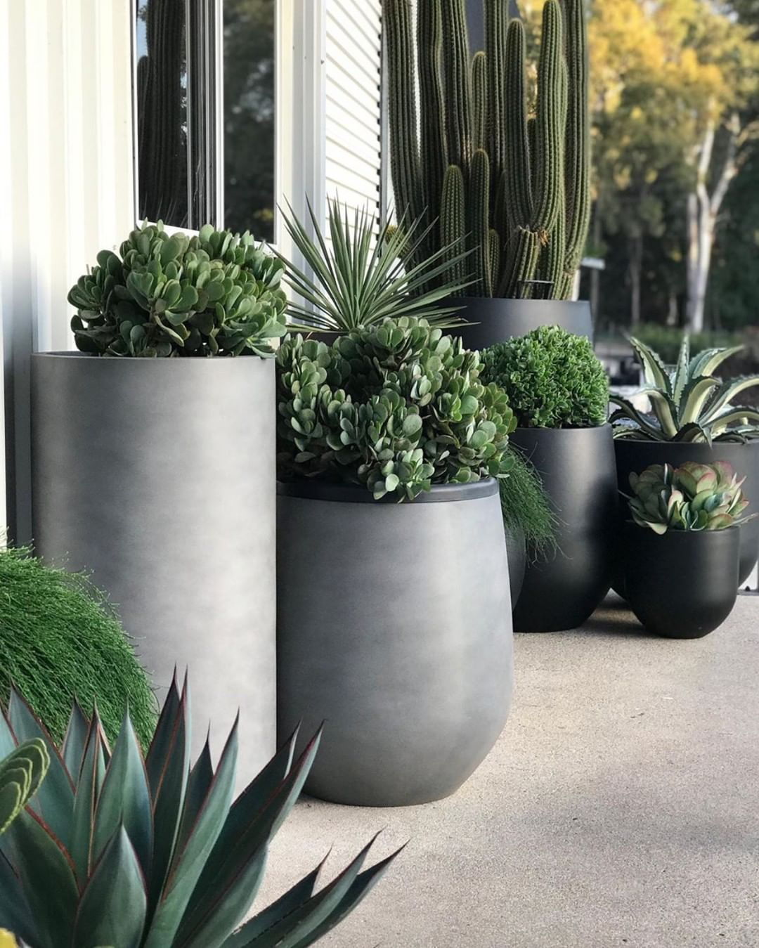 The Balcony Garden Su Instagram Did Someone Say Garden Pots Another Impressive Pot Cluster By Our F Large Garden Planters Garden Pots