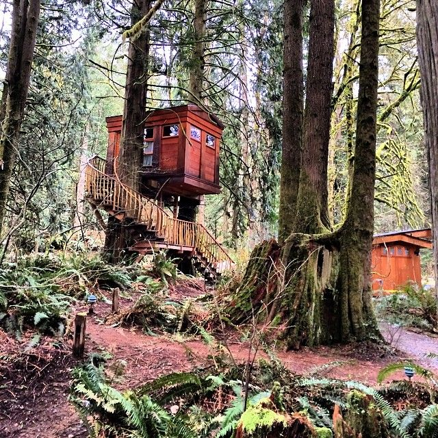 Treehouse point bed and breakfast in issaquah. Pnw map O