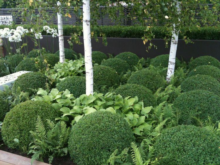 Garten-Modern-Gestalten-Kugel-Form-Buchsbaum-Birken