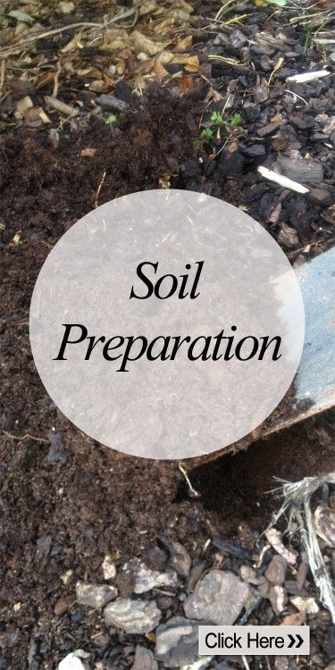 SoilPreparation