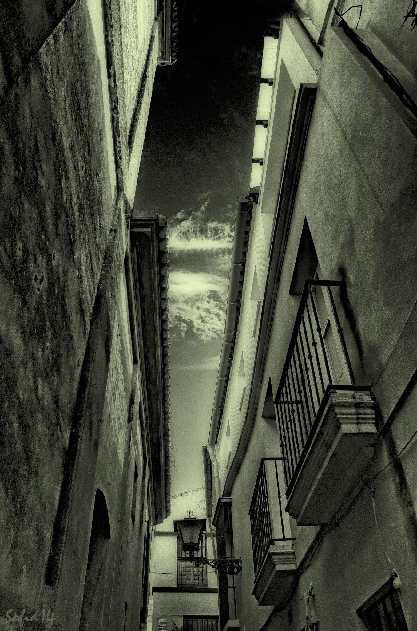 En huida II by Sofía Serra