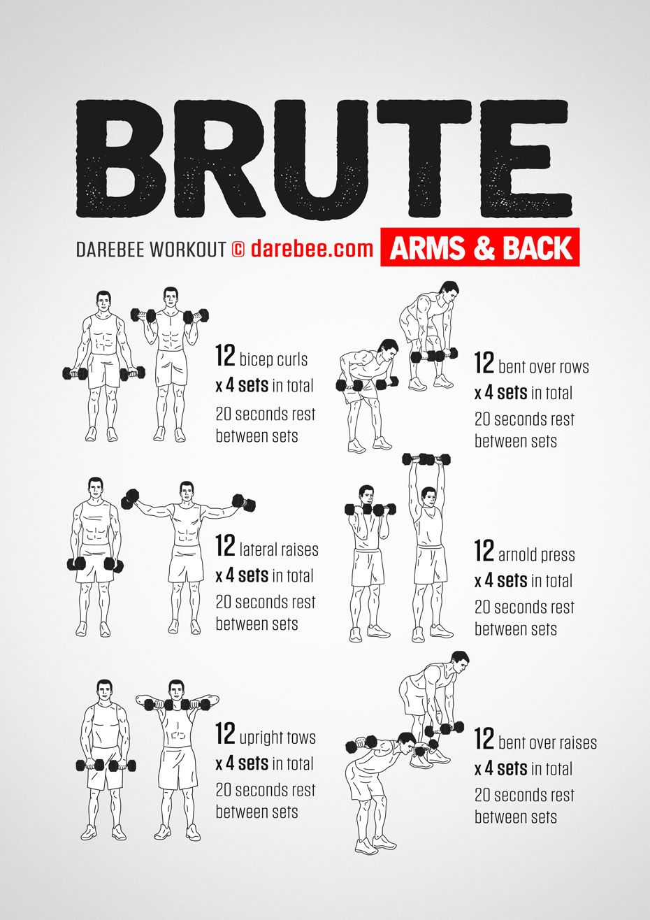 Brute Arms Back Workout Strength Training Workouts Back Of