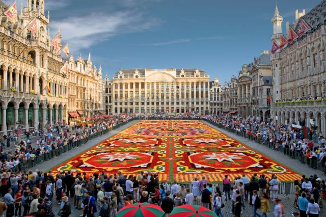 This Spectacular Flower Carpet Is Made From 700,000 Begonia Petals