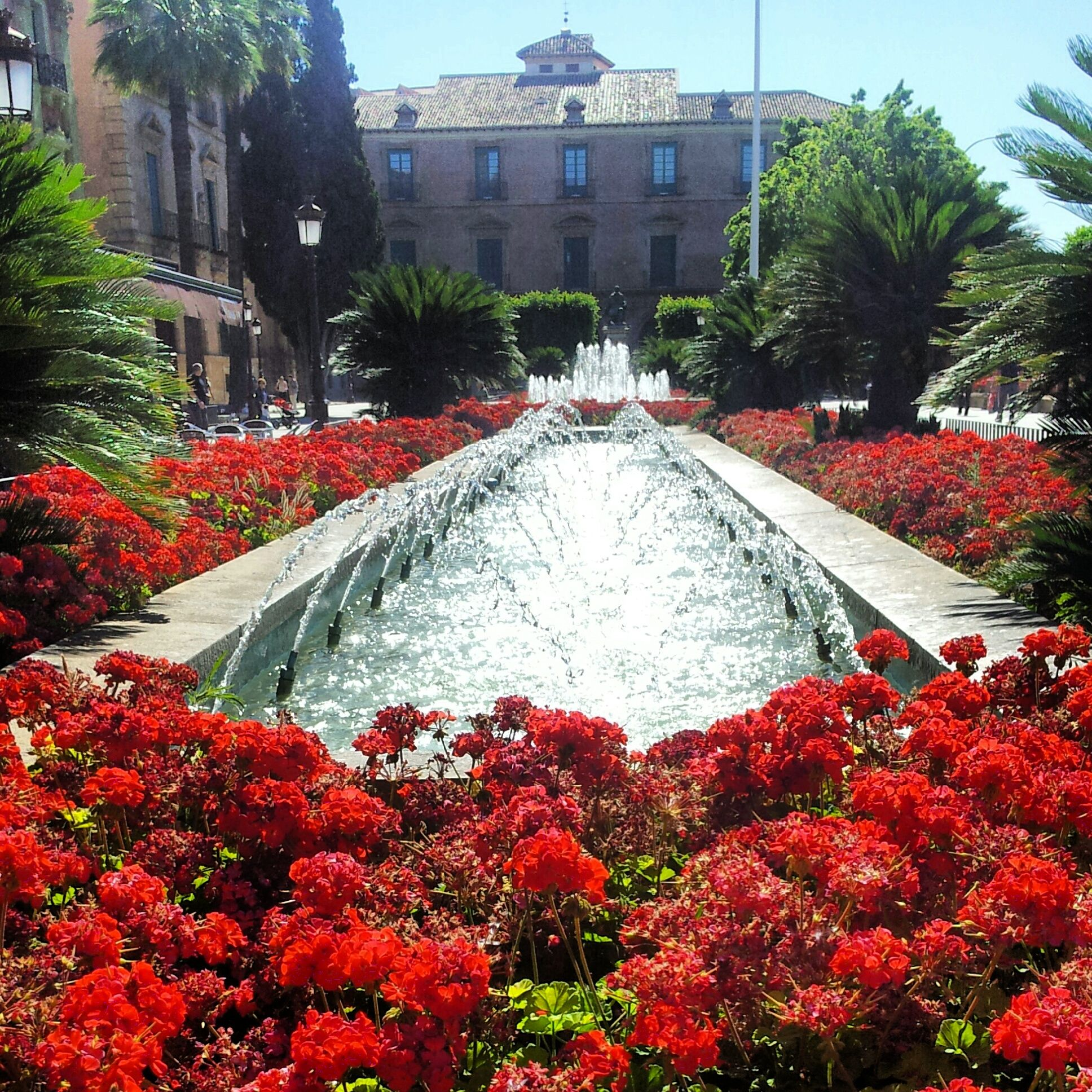 46 Ideas De Murcia Actual Murcia Fotografia Murcia España