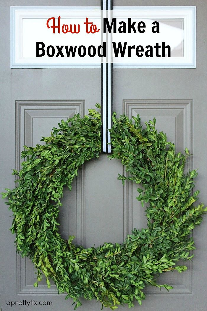 Boxwood Wreath Outdoor Wreath Winter Wreath For Front Door Wreath to be Enjoyed Year Round