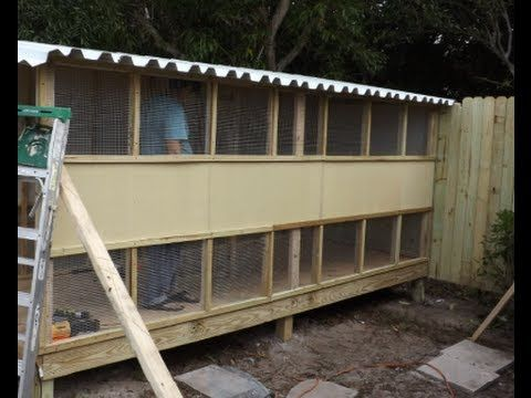 How To Build A Pigeon Breeding Loft In 8 Hours Pigeon