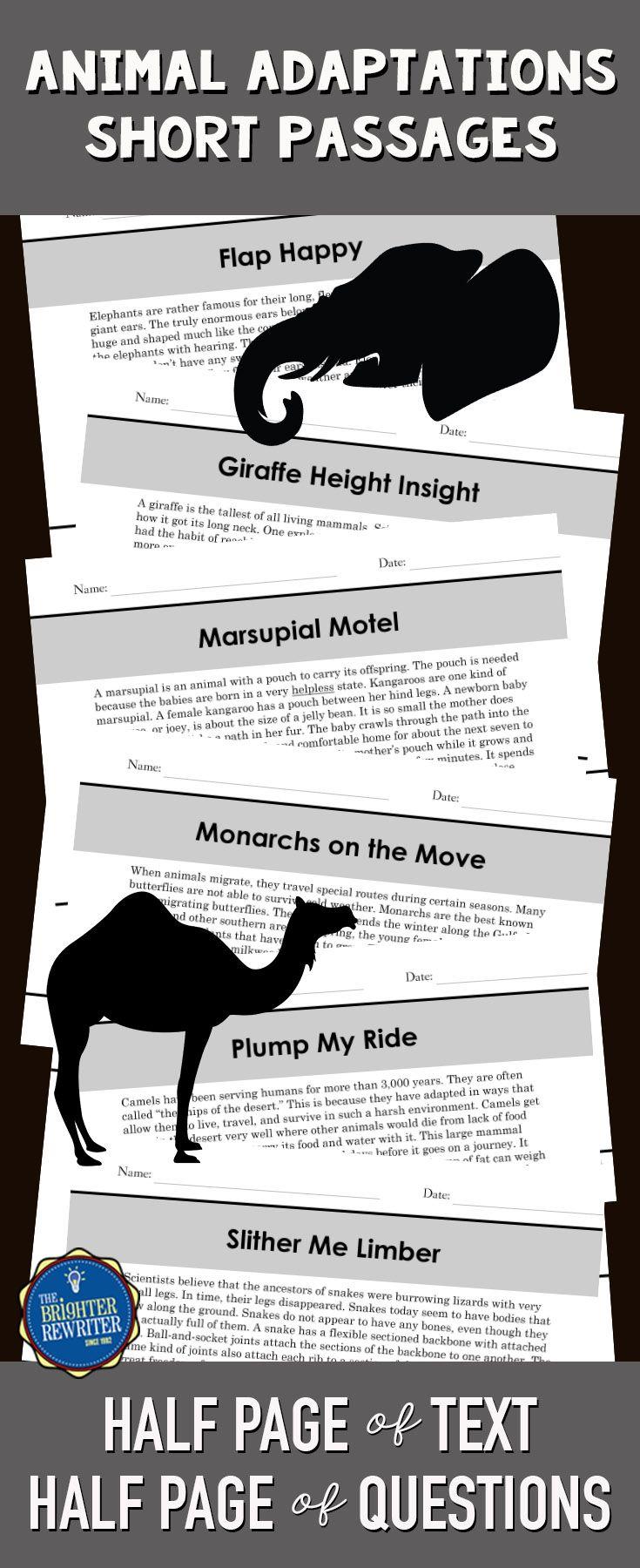 Animal Adaptations Reading Comprehension Passages Set 1 Animal Adaptations Adaptations Animal Adaptations Reading Passages [ 1800 x 735 Pixel ]