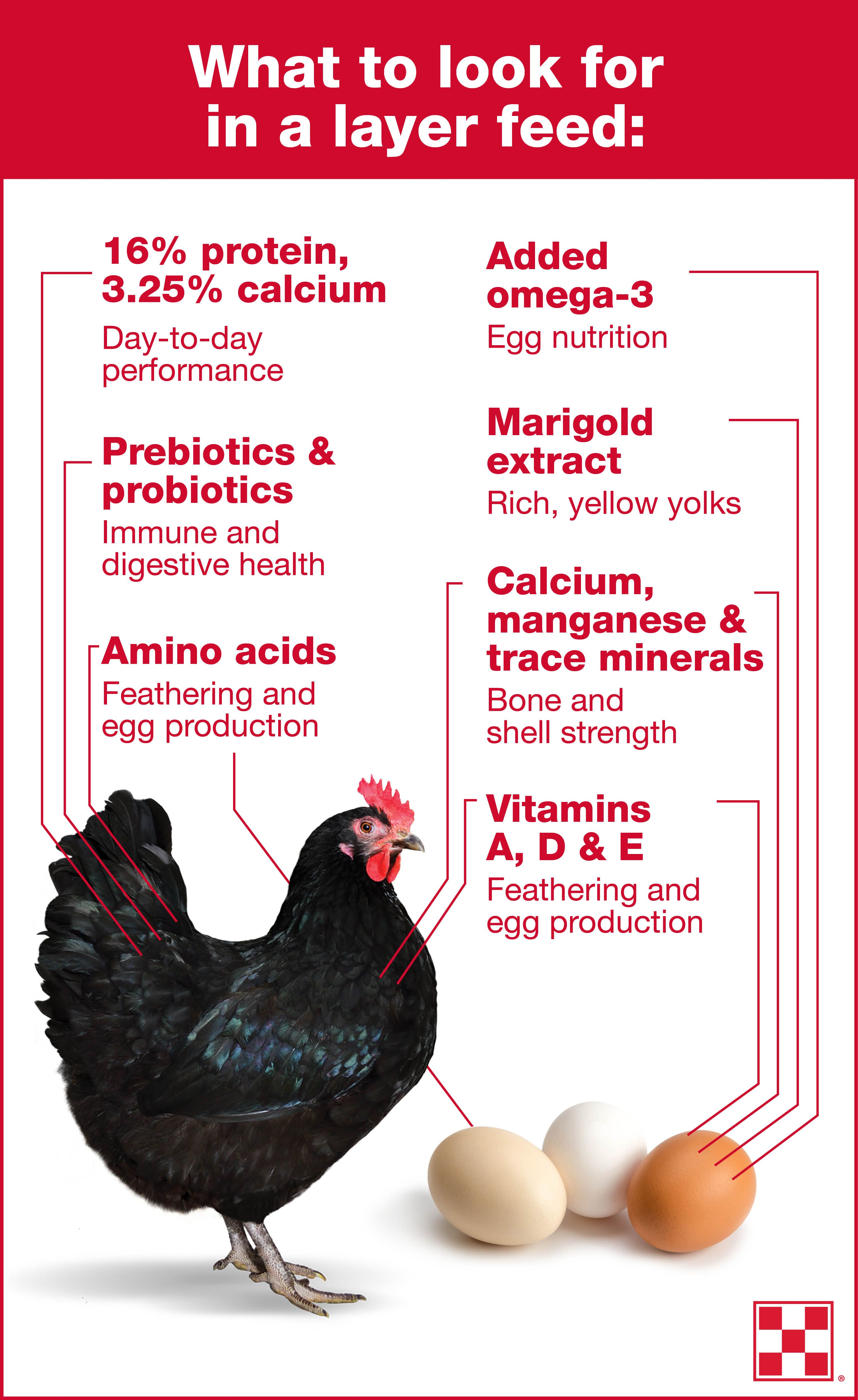 to produce a quality farm fresh egg each day hens need 38