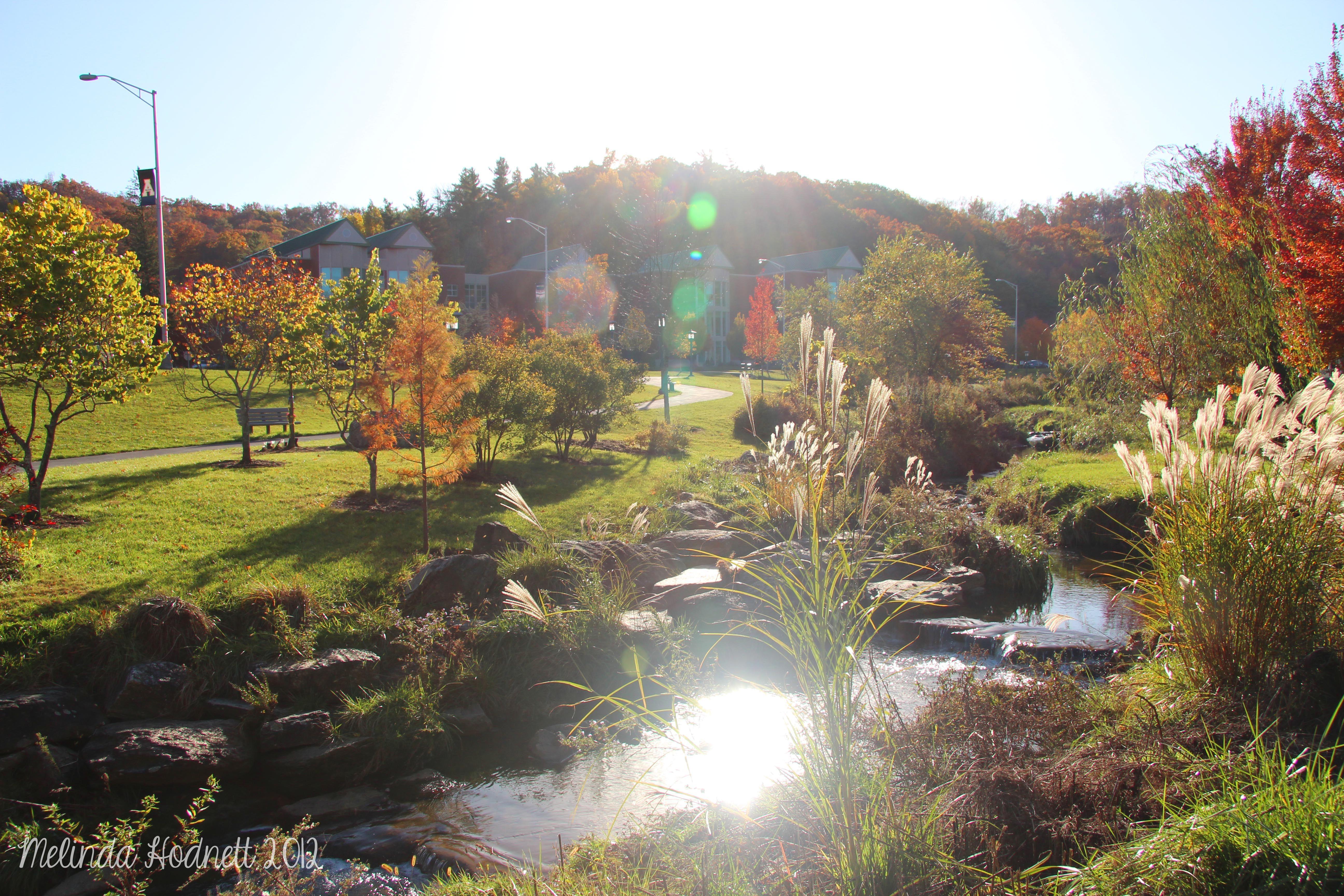 Durham Park, Appalachian State University, Boone, NC. Fall
