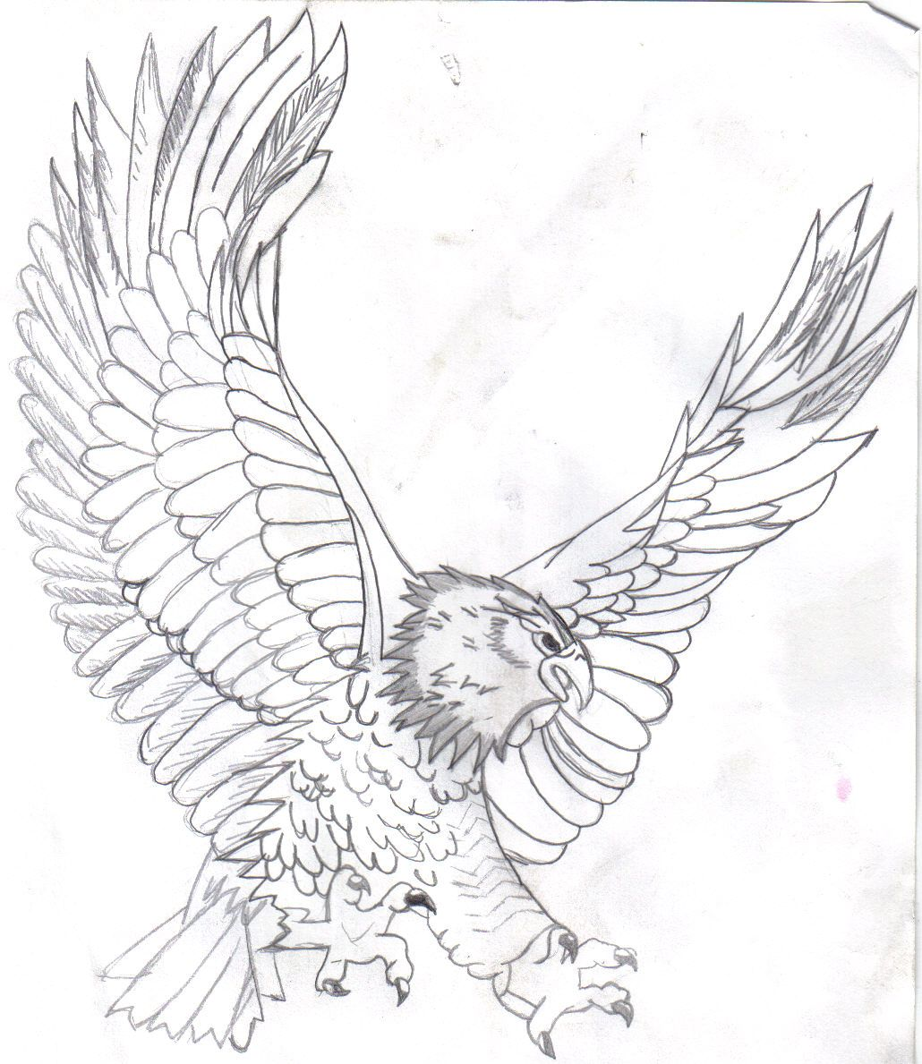 find this pin and more on animal by e_croslandwood bald eagle coloring pages
