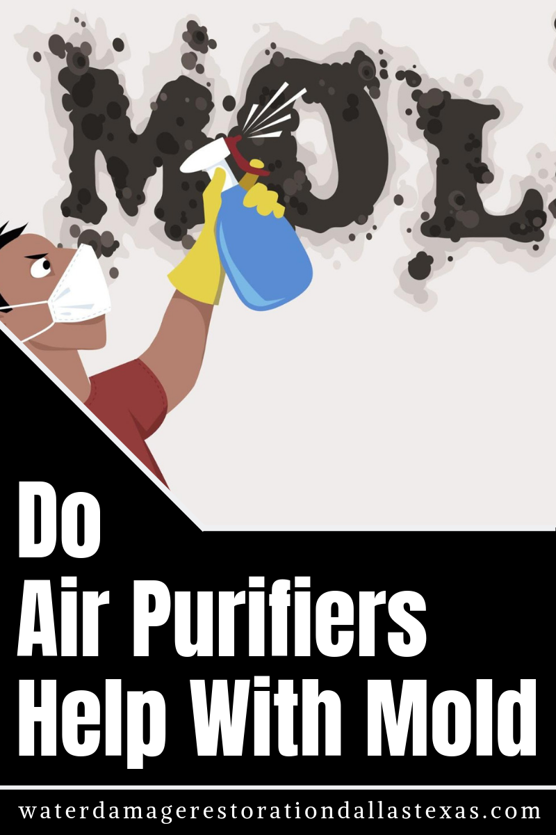 Do Air Purifiers Help With Mold (With images) Air