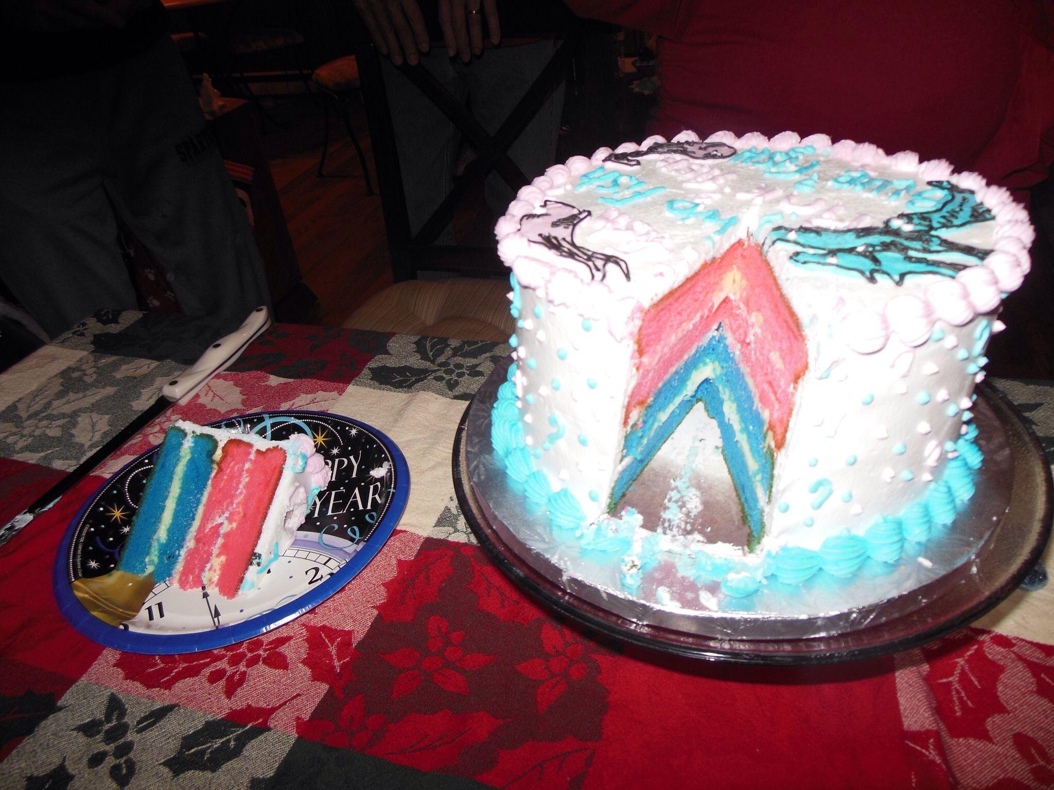 Twin Gender Reveal Cake Baby Twin Gender Reveal