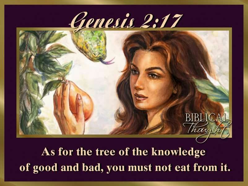 Saturday, September 24 As for the tree of the knowledge of good and bad, you must not eat from it.—Gen. 2:17. http://wol.jw.org/en/wol/h/r1/lp-e