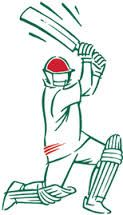 Image result for cricket club logo