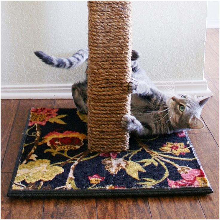 "DIY cat scratcher Make a wooden base from plywood 18""x18"