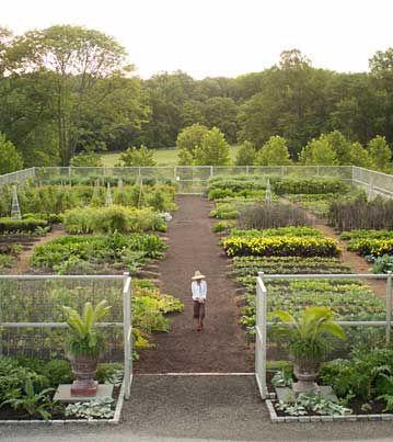 Garden Inspiration: Pinterest Finds - Green Gardening ...