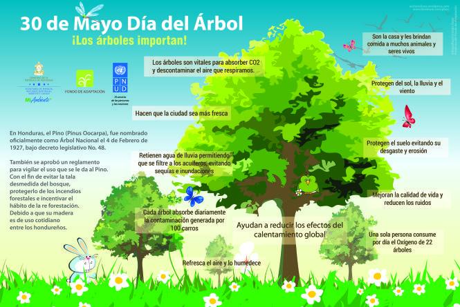 Infograf a dia del arbol 2015 rbores d a del arbol for Porque son importantes los arboles wikipedia
