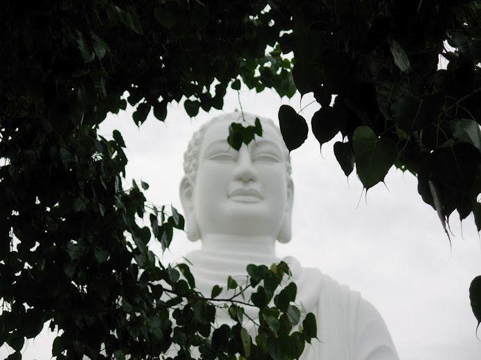 Near temple in NhaTrang, Vietnam