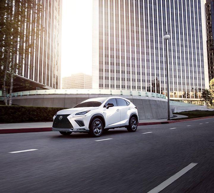 Nx 300 Luxury Crossovers Lexus Car Model