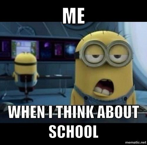 Despicable Me Meme With Images Minions Funny Funny Minion