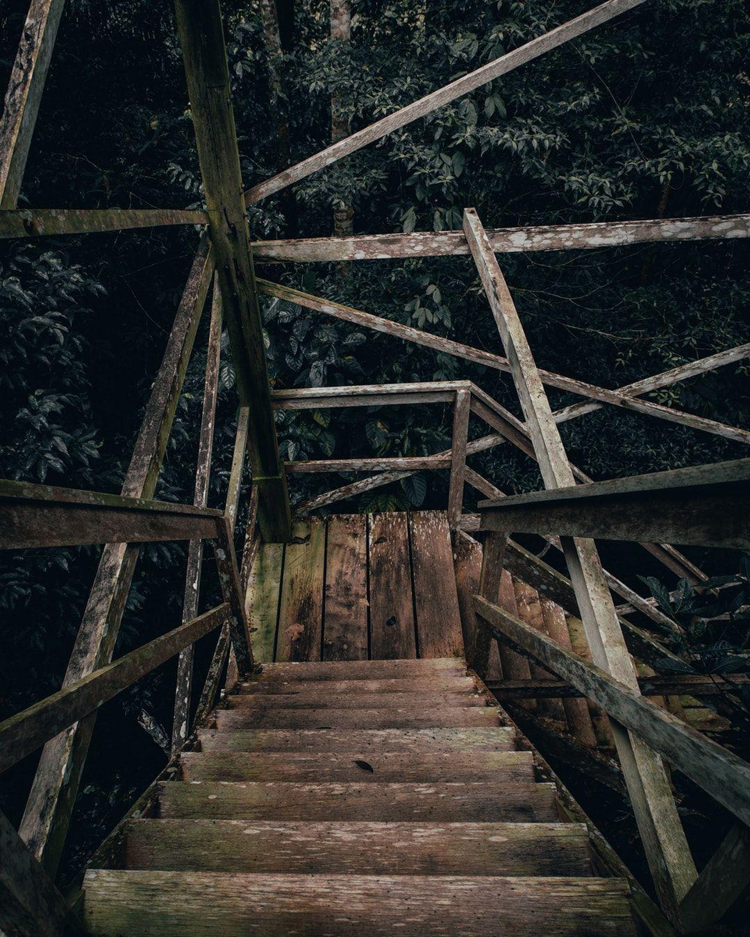 Woodworking Woodshop Woodworkingtools In 2020 Woodworking Shop Projects Diy Wooden Projects Wooden Stairs