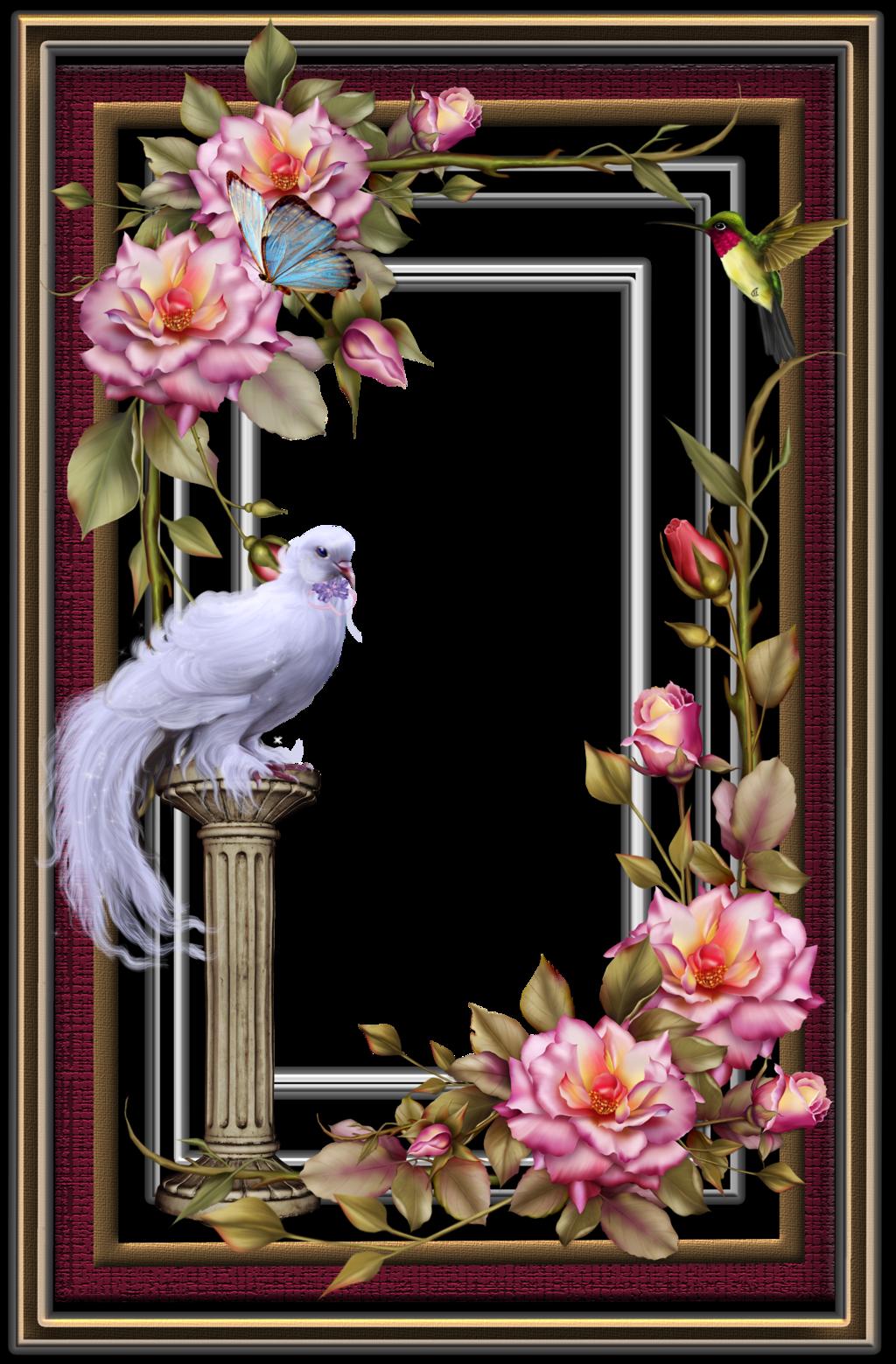 Frame22 By Collect And Creat On Deviantart Framed Wallpaper Frame Flower Frame