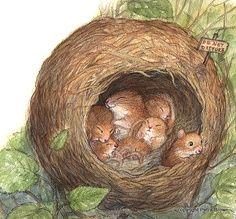 nid de souris illustrations pinterest nids souris et mimi la petite souris. Black Bedroom Furniture Sets. Home Design Ideas